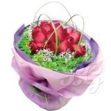 BG_HBQ0001(Rose)