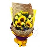 BG_HBQ00152(Sunflower)