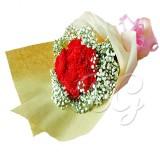 BG_HBQ0024(Carnation)