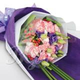 BG_HBQ0061(Carnation)