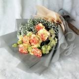 BG_HBQ0023A(Carnation)