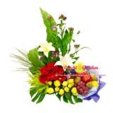 Fruitti Harvest